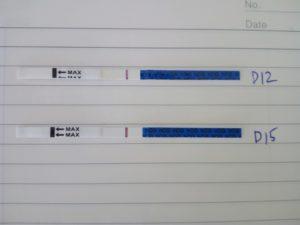 高温期 早期妊娠検査薬陰性の画像